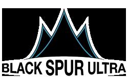blackspur_logo